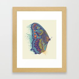 Butterfly Life Cycle Framed Art Print