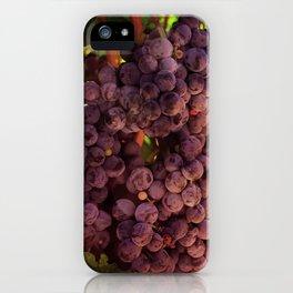 Vineyard Vines iPhone Case