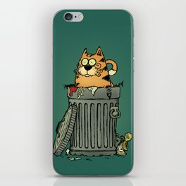 Stray cat iPhone Skin