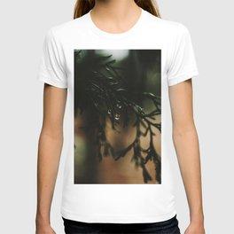 Water Drops from Winter Fir Branch T-shirt
