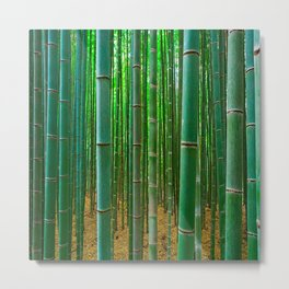 BAMBOO FOREST1 Metal Print