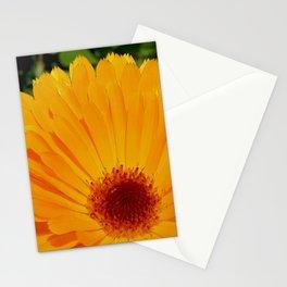 Orange Pot Marigold Stationery Cards