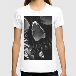 Light Within 1 T-shirt