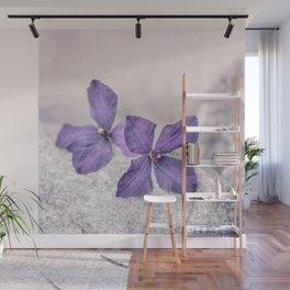Zen Soft Pastel Purple Clematis Blossom Wall Mural