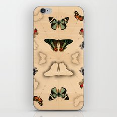 Butterfly Coordinates iPhone & iPod Skin