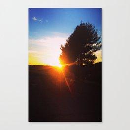VineYard Sunset Canvas Print