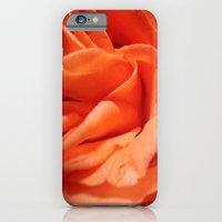 Rosa Vieja Slim Case iPhone 6s