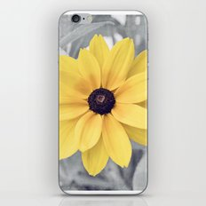 Yellow Grey Flower Photography, Yellow Gray Nature Floral Photography iPhone & iPod Skin