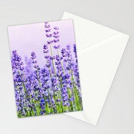 Lavender 15  Stationery Cards