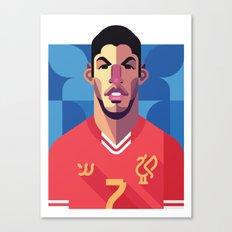LS7 | Reds Canvas Print