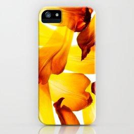 Golden Tulip Petals iPhone Case