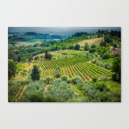 Tuscan Hillside, San Gimignano, Italy Canvas Print