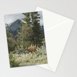 Alberta Wilderness Landscape Photograhy   Elk   Wildlife   Animal Stationery Cards
