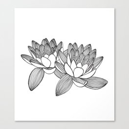 Water lily minimalistic drawing Canvas Print