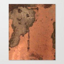 Tarnished Copper rustic decor Canvas Print