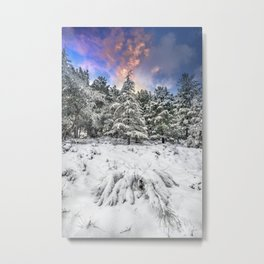 """""""Mountain Light IV"""" Snowy Forest At Sunset Metal Print"""