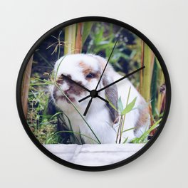 Bunny smiling in the garden Wall Clock