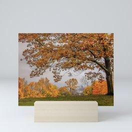 Brookline, Summer street view of fall Mini Art Print
