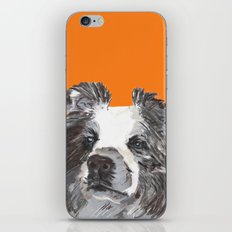 Border Collie printed from an original painting by Jiri Bures iPhone & iPod Skin