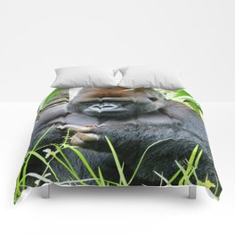 Pondering Pinecone  Comforters