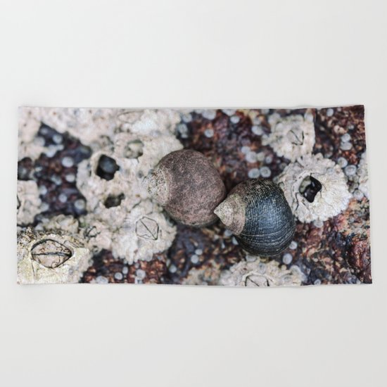 Periwinkles and Barnacles on a rock Beach Towel
