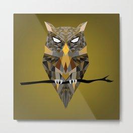 Diffracted Owl Metal Print