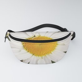 Daisy flower in summer Fanny Pack