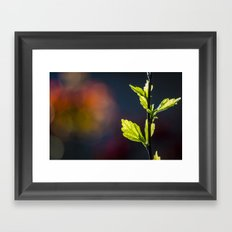 Leaves in a colorful world Framed Art Print