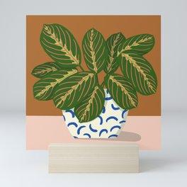 Prayer Plant Mini Art Print