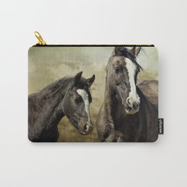Feldspar and Ohanzee Carry-All Pouch