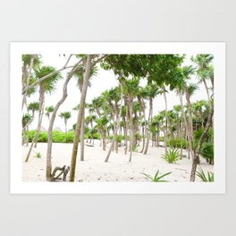 Palm Tree Forest Art Print