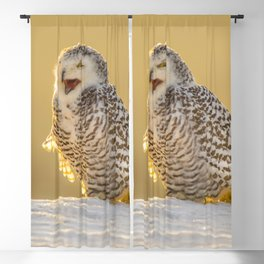 Snowy Owl Blackout Curtain