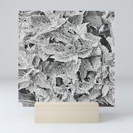 coleus black and white Mini Art Print
