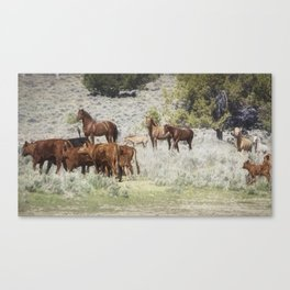 Meeting of the Herds Canvas Print