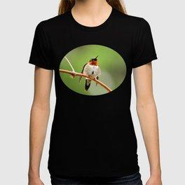 Hummingbird XVII T-shirt