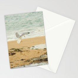 Gull Flight Photography  art Stationery Cards