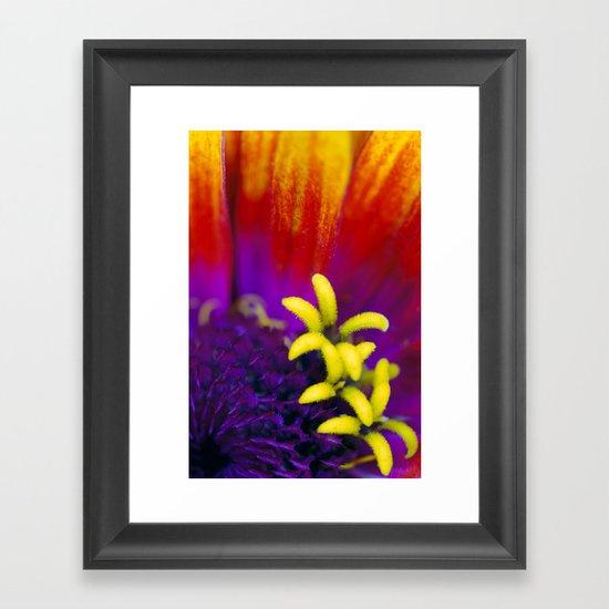 Tiny Garden Framed Art Print