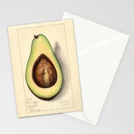Botanical Avocado Stationery Cards