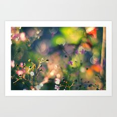 The Rainbow Forest I Art Print