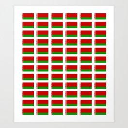 flag of belarus -Беларусь,Белоруссия,Belarus,Belarusian,Minsk. Art Print