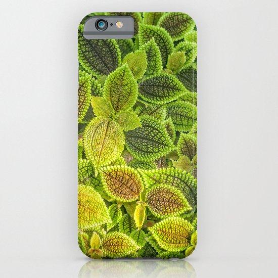 Friendship plant iPhone & iPod Case