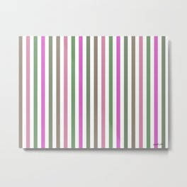 Pink Roses in Anzures 1 Stripes 1V Metal Print
