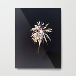 Fireworks on the Fourth Metal Print