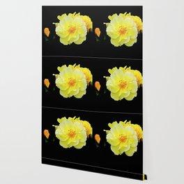 Yellow roses on black Wallpaper