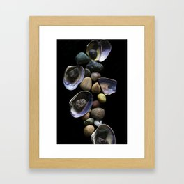 Shells and Stones May... Framed Art Print