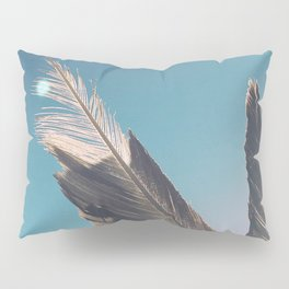 Brown Feathers Pillow Sham