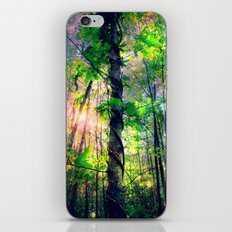 Forest of the Fairies (Deep Pastels) iPhone & iPod Skin