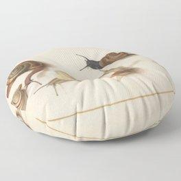 Naturalist Snails Floor Pillow