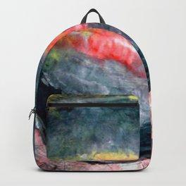 2005-1 Backpack