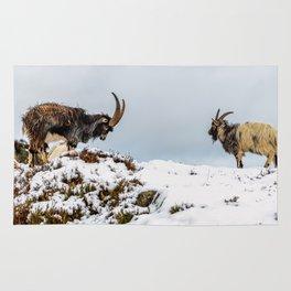 Welsh Mountain Goats Rug